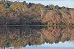 Paul do Boquilobo Nature Reserve 02.jpg